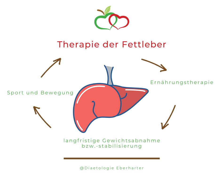 Grafik_Fettleber-Therapie_Diaetologie-Eberharter