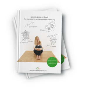 E-Book Mockup Darmgesundheit